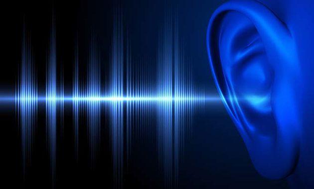 サウンドと耳